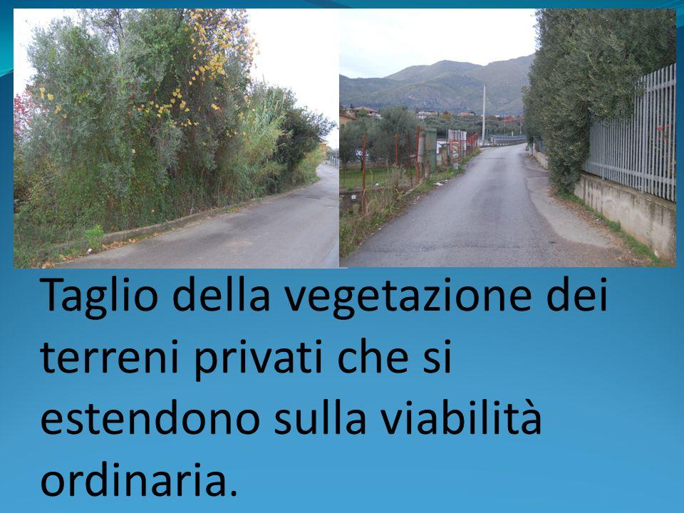Taglio della vegetazione dei terreni privati che si estendono sulla viabilità ordinaria.