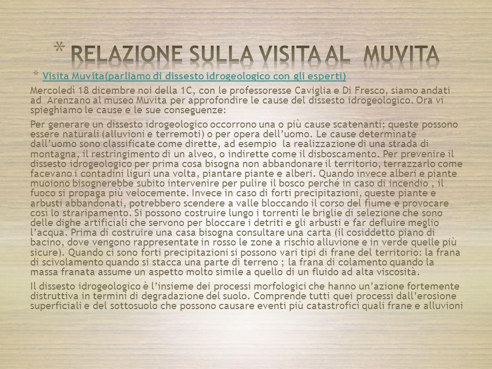 RELAZIONE SULLA VISITA AL MUVITA