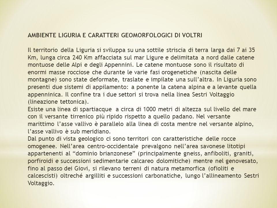 AMBIENTE LIGURIA E CARATTERI GEOMORFOLOGICI DI VOLTRI
