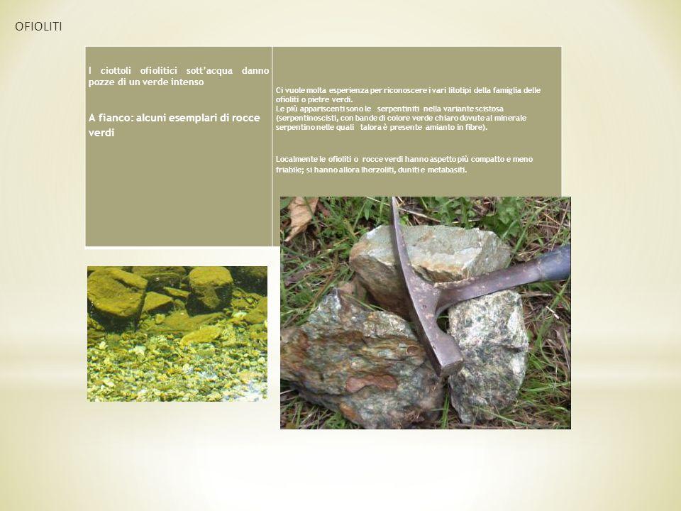 OFIOLITI A fianco: alcuni esemplari di rocce verdi