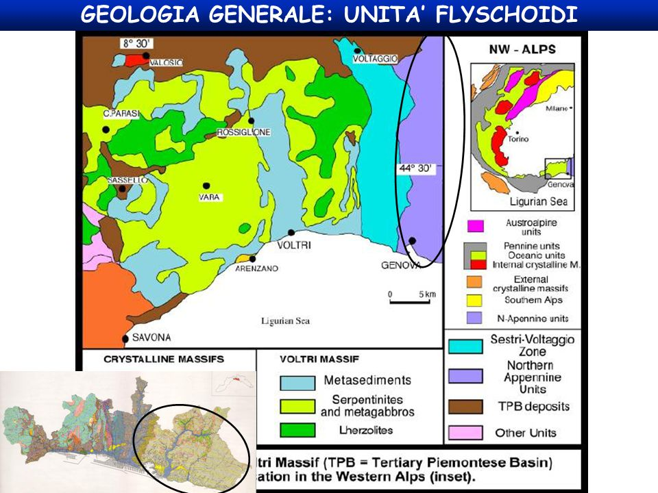 GEOLOGIA GENERALE: UNITA' FLYSCHOIDI