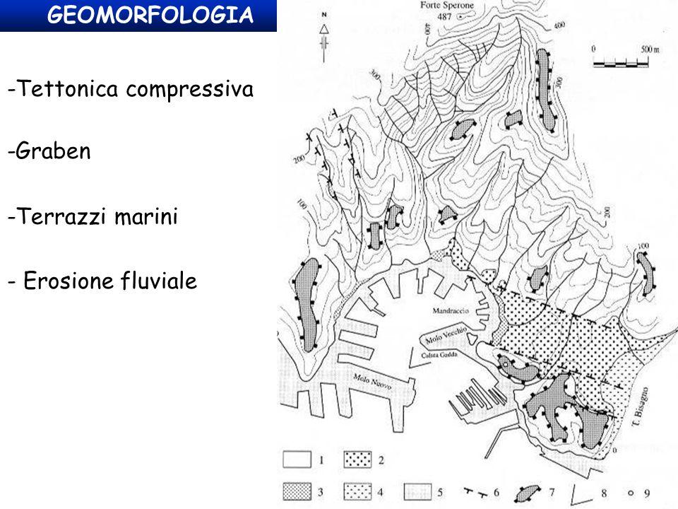 GEOMORFOLOGIA -Tettonica compressiva -Graben -Terrazzi marini - Erosione fluviale