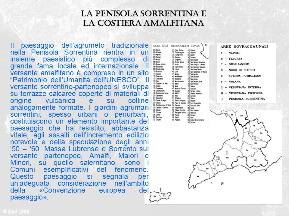 La penisola Sorrentina e la costiera amalfitana