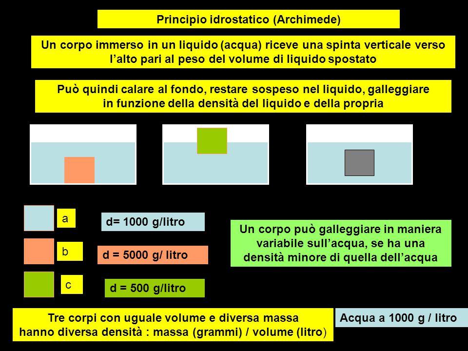 Principio idrostatico (Archimede)
