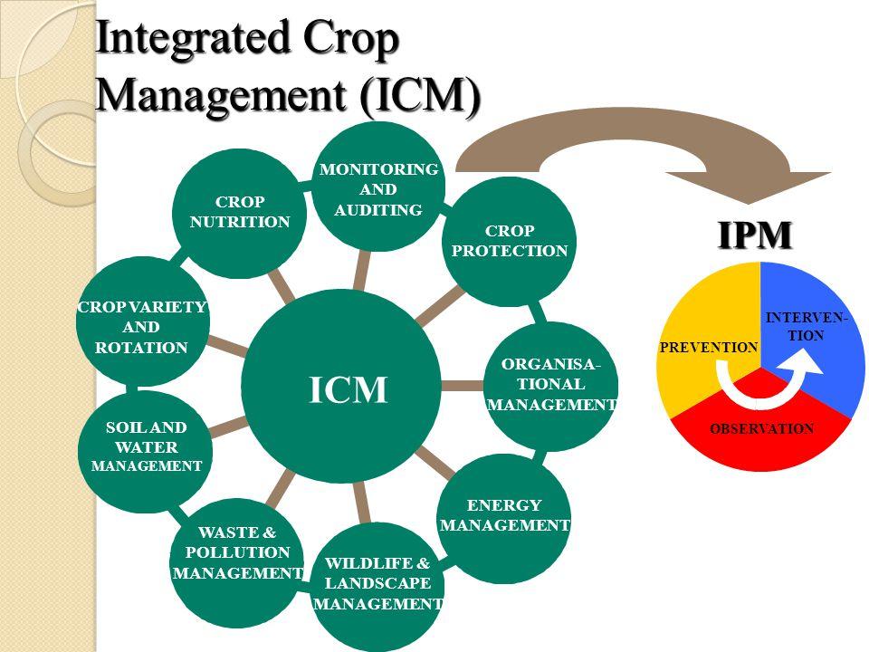 Integrated Crop Management (ICM)