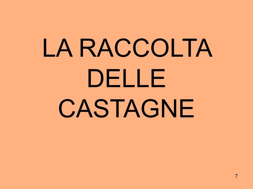 LA RACCOLTA DELLE CASTAGNE