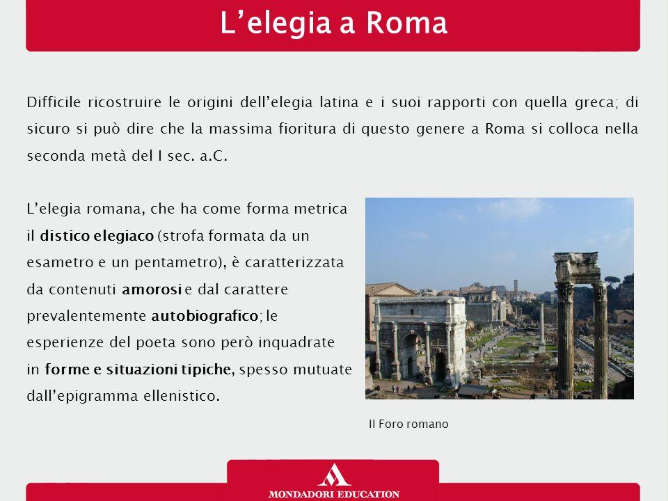 L'elegia a Roma 13/01/13.