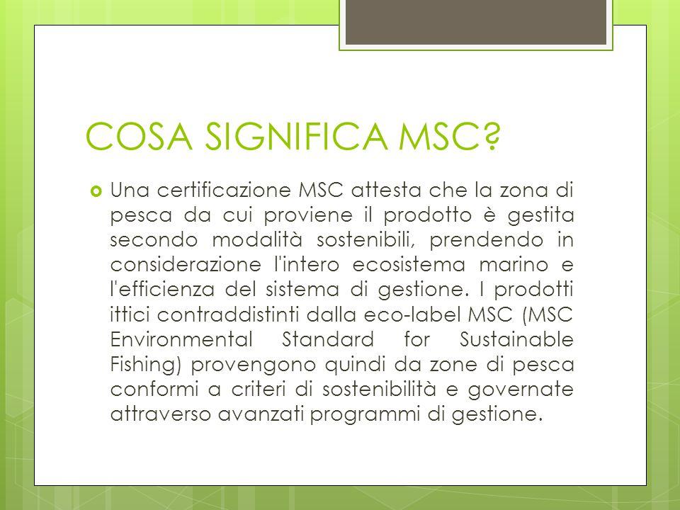 COSA SIGNIFICA MSC