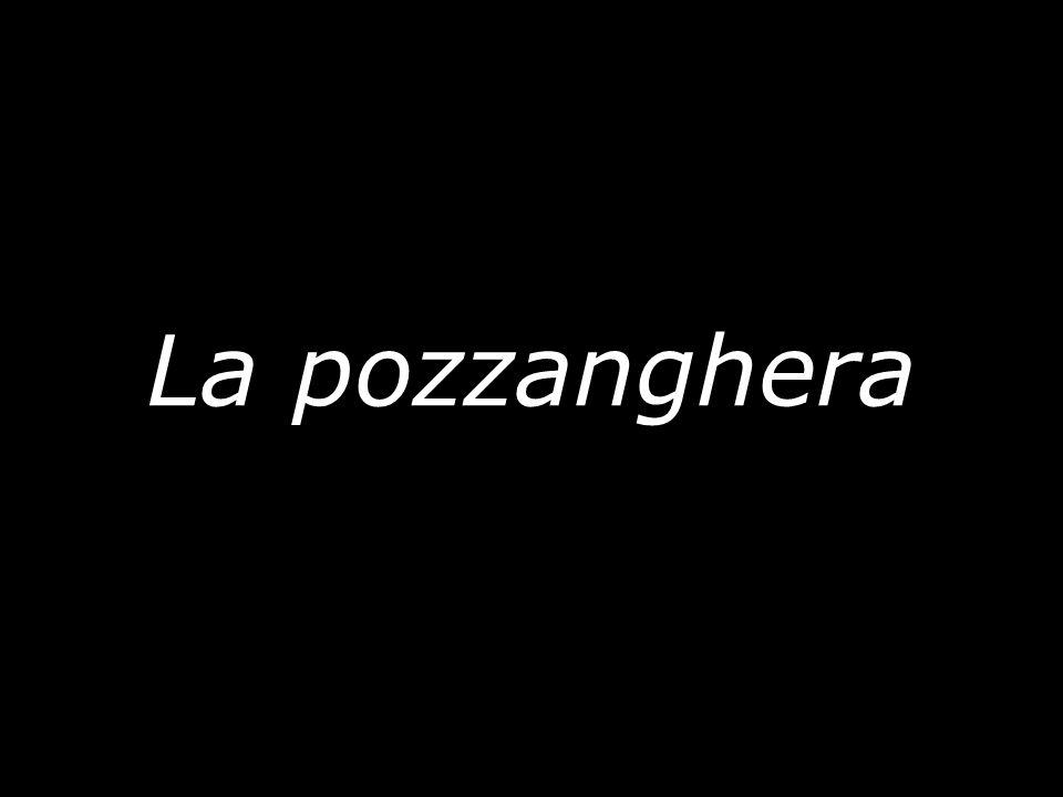 La pozzanghera