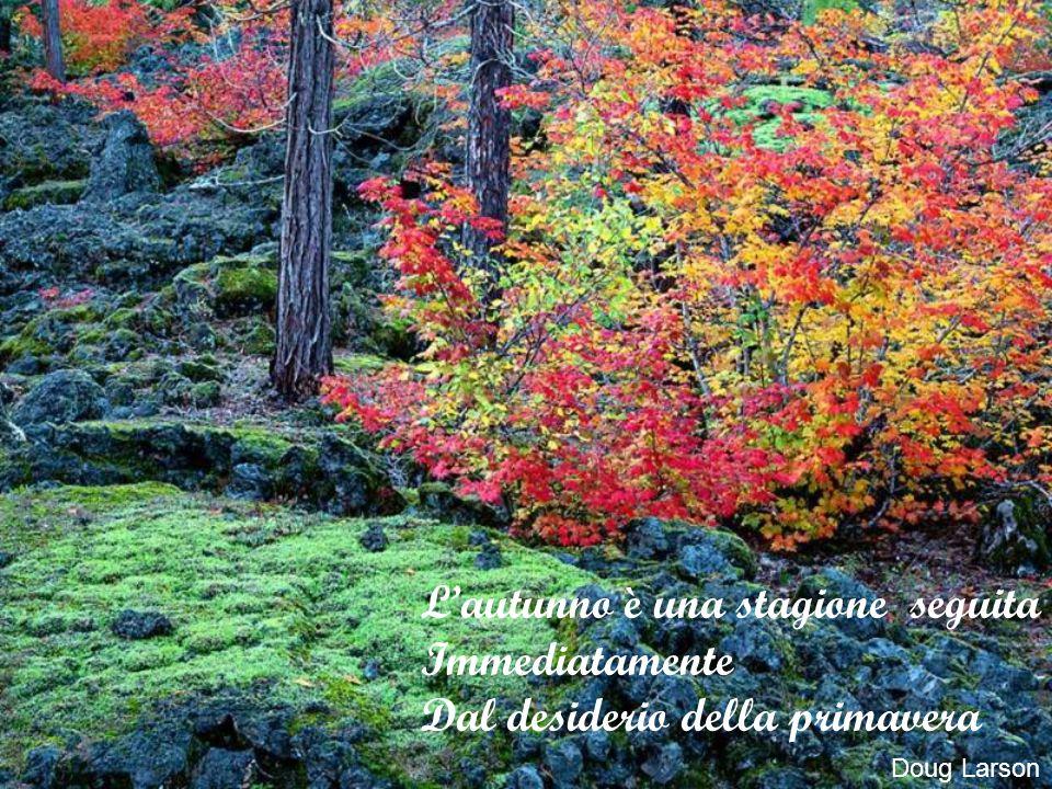 L'autunno è una stagione seguita Immediatamente