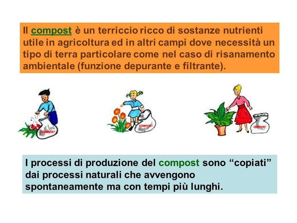 Il compost è un terriccio ricco di sostanze nutrienti utile in agricoltura ed in altri campi dove necessità un tipo di terra particolare come nel caso di risanamento ambientale (funzione depurante e filtrante).