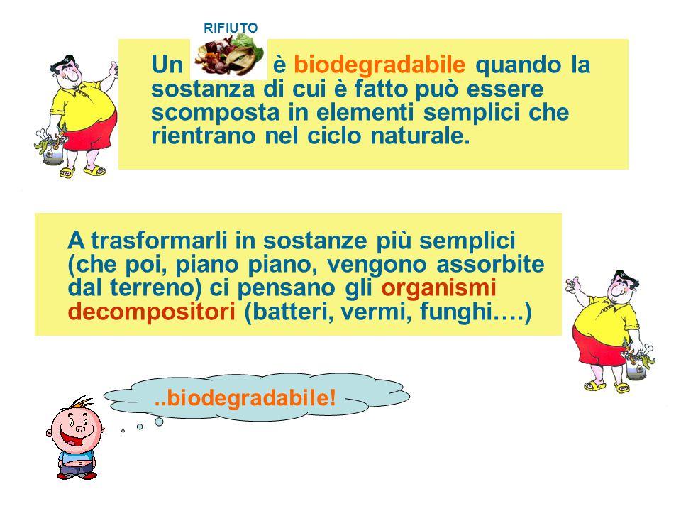 RIFIUTO Un è biodegradabile quando la sostanza di cui è fatto può essere scomposta in elementi semplici che rientrano nel ciclo naturale.