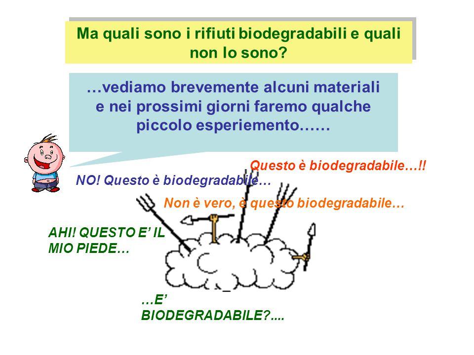 Ma quali sono i rifiuti biodegradabili e quali non lo sono