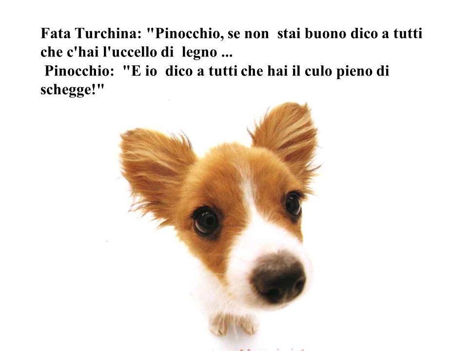 Fata Turchina: Pinocchio, se non stai buono dico a tutti che c hai l uccello di legno ...