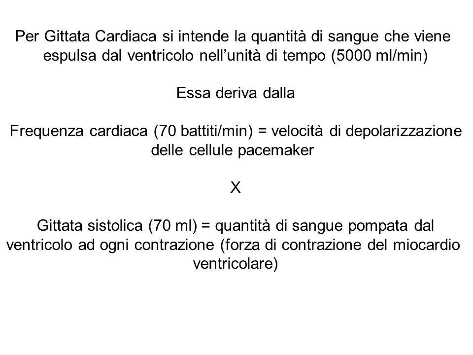 Per Gittata Cardiaca si intende la quantità di sangue che viene