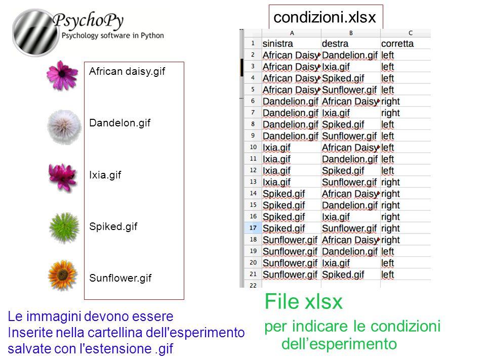 File xlsx condizioni.xlsx per indicare le condizioni dell'esperimento