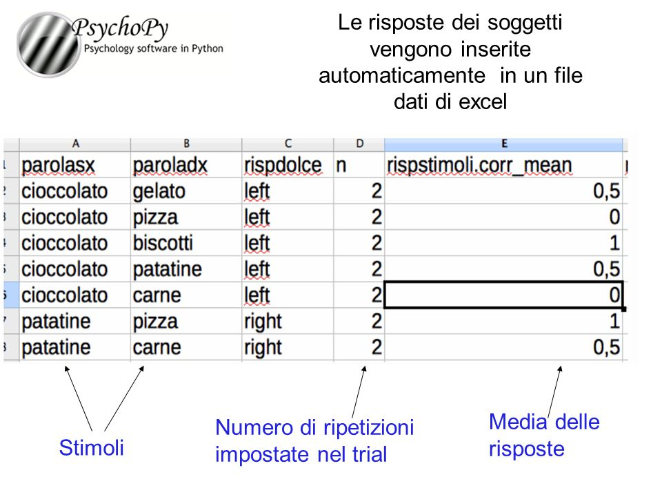 Le risposte dei soggetti vengono inserite automaticamente in un file dati di excel