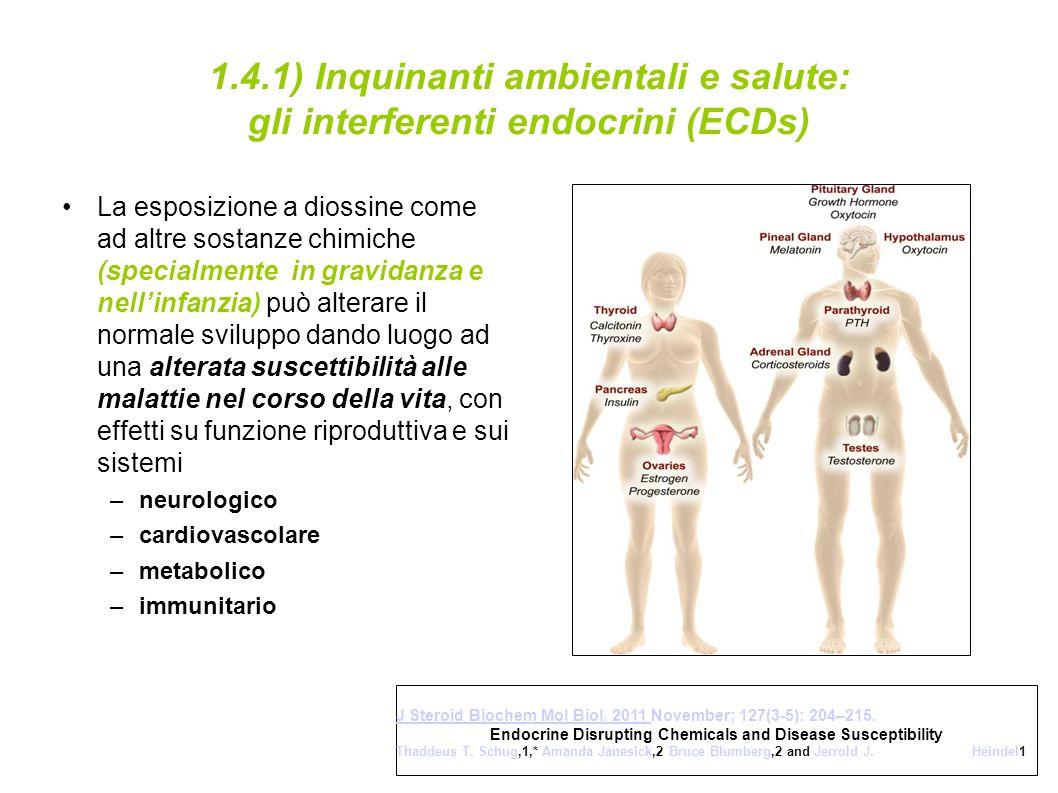 1.4.1) Inquinanti ambientali e salute: gli interferenti endocrini (ECDs)