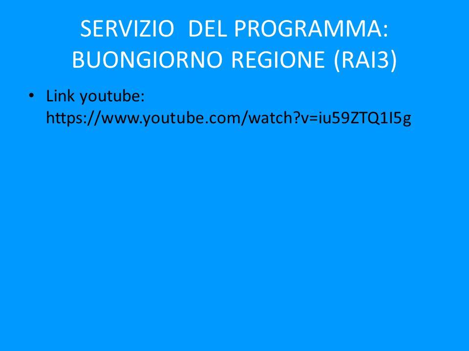 SERVIZIO DEL PROGRAMMA: BUONGIORNO REGIONE (RAI3)