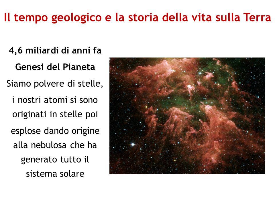 Il tempo geologico e la storia della vita sulla Terra