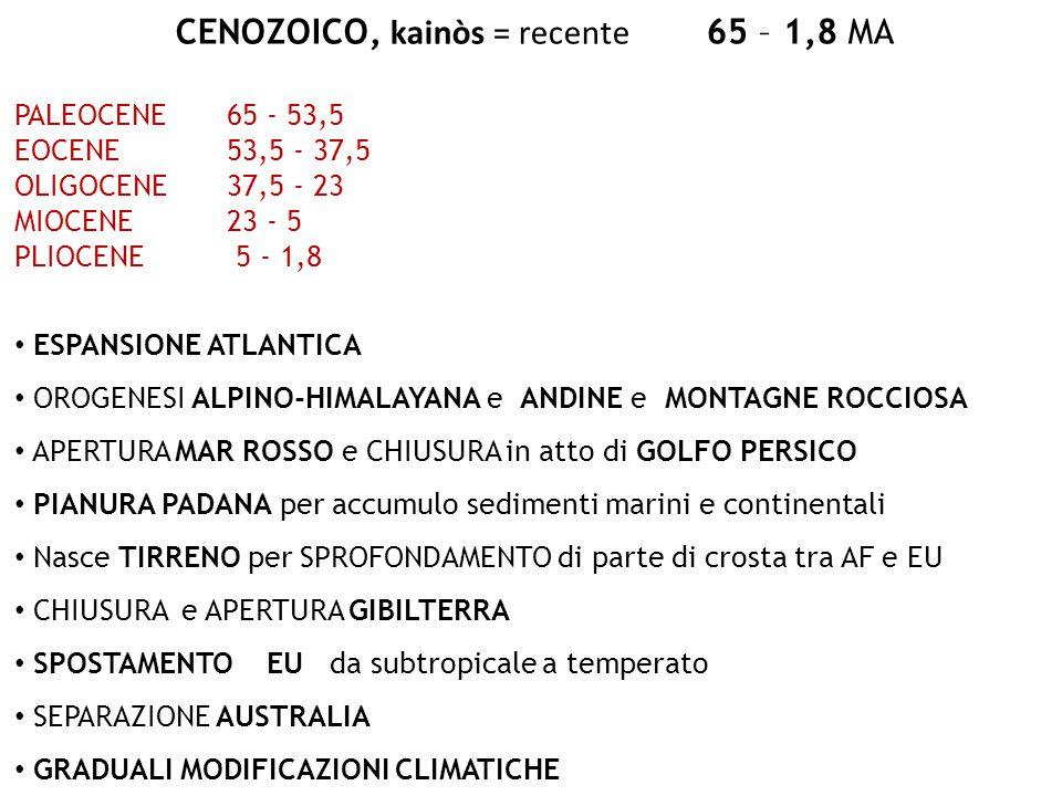 CENOZOICO, kainòs = recente 65 – 1,8 MA