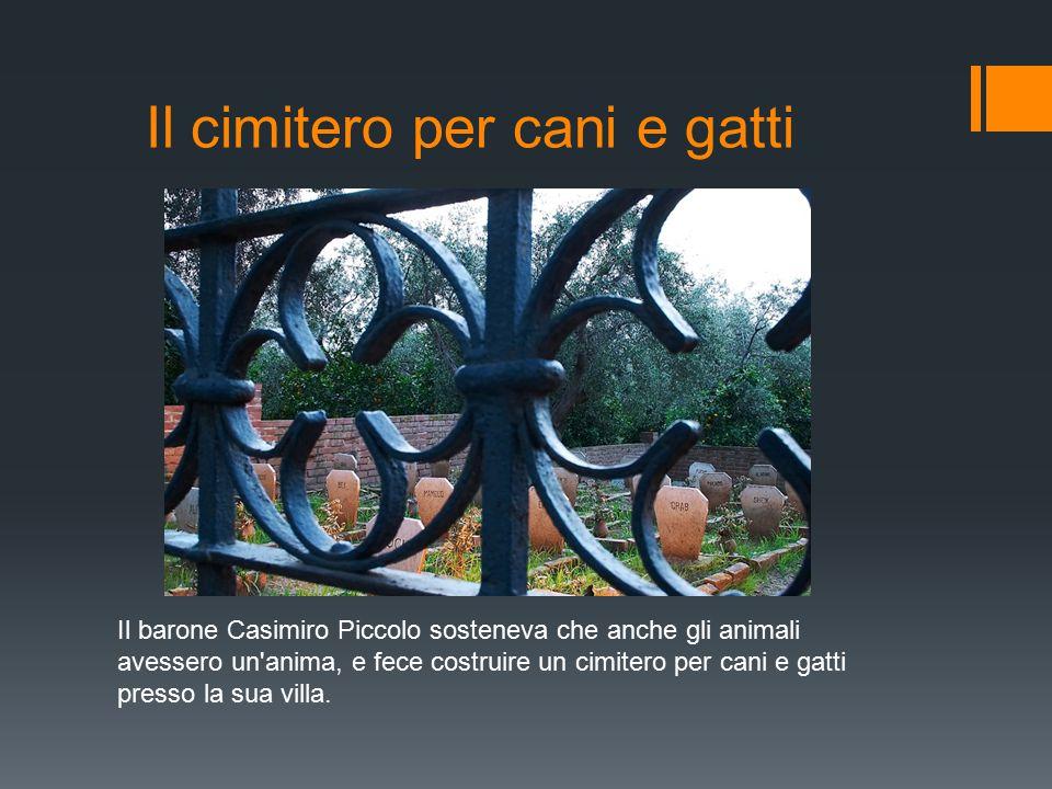 Il cimitero per cani e gatti