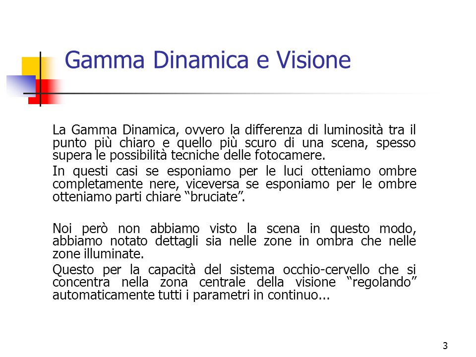 Gamma Dinamica e Visione