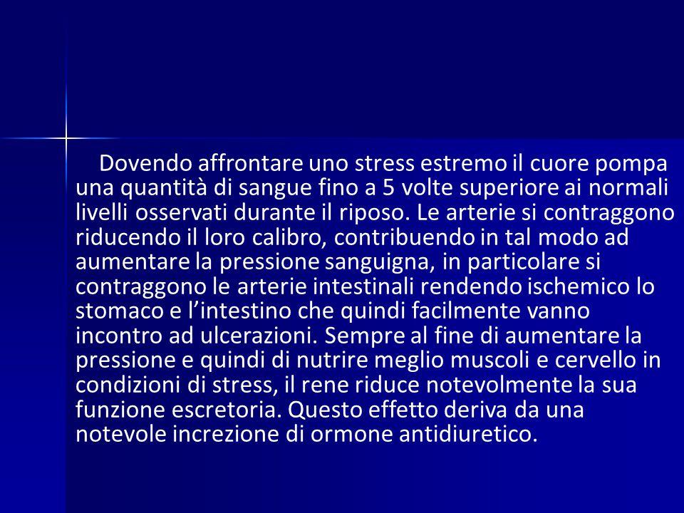 Dovendo affrontare uno stress estremo il cuore pompa una quantità di sangue fino a 5 volte superiore ai normali livelli osservati durante il riposo.