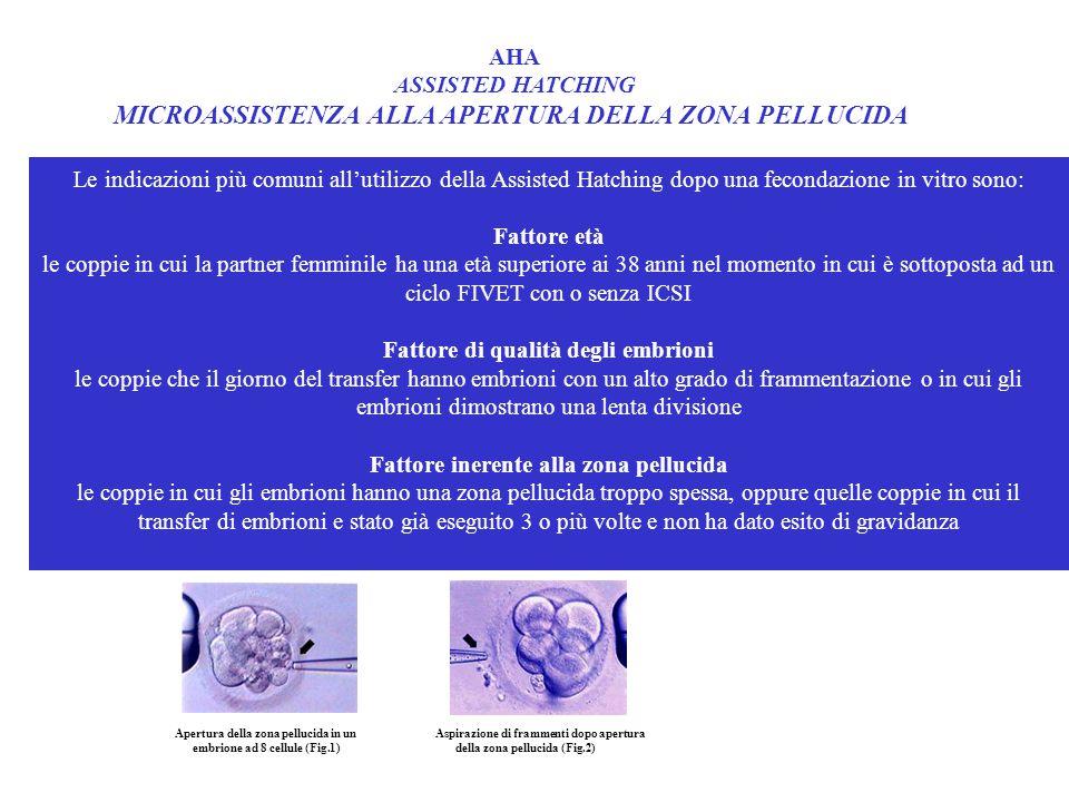 Fattore di qualità degli embrioni