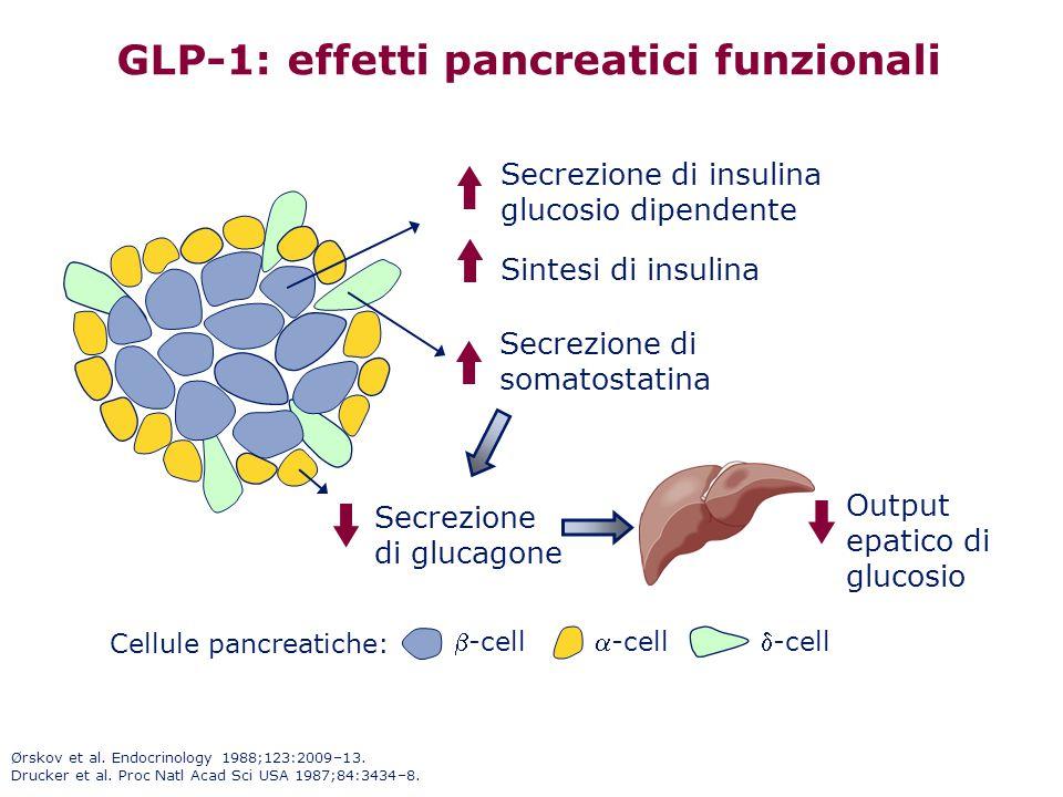 GLP-1: effetti pancreatici funzionali