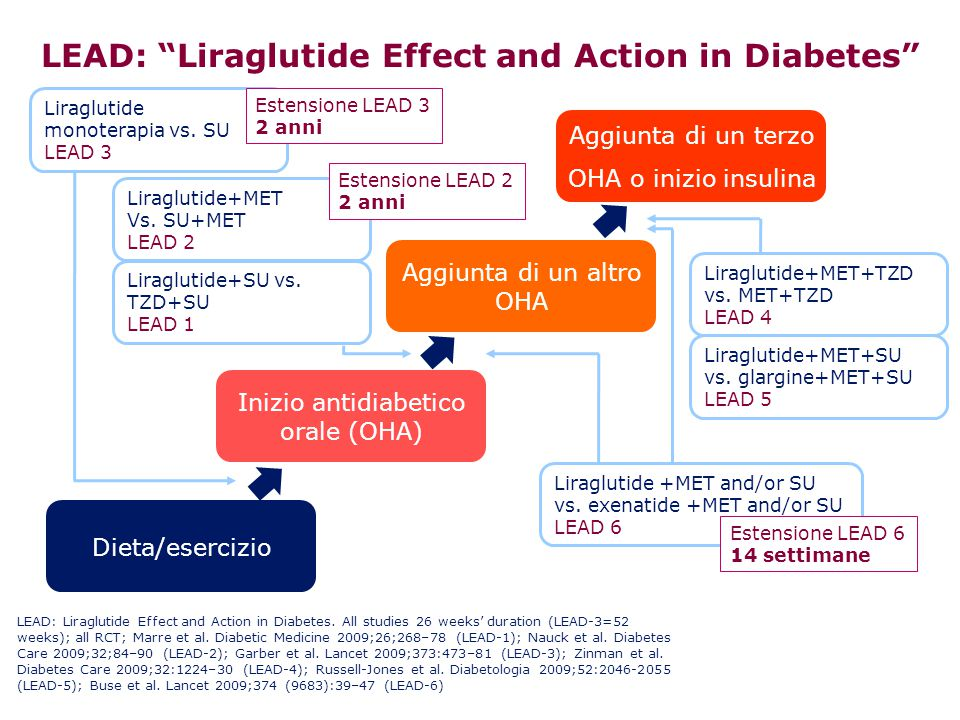 LEAD: Liraglutide Effect and Action in Diabetes
