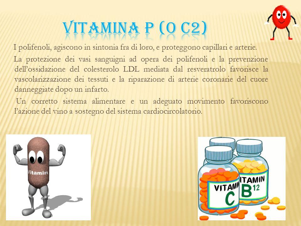 Vitamina P (o C2) I polifenoli, agiscono in sintonia fra di loro, e proteggono capillari e arterie.