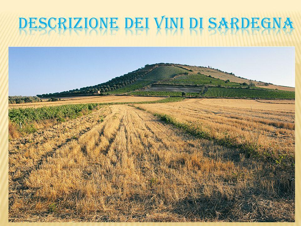 Descrizione dei vini di SARDEGNA