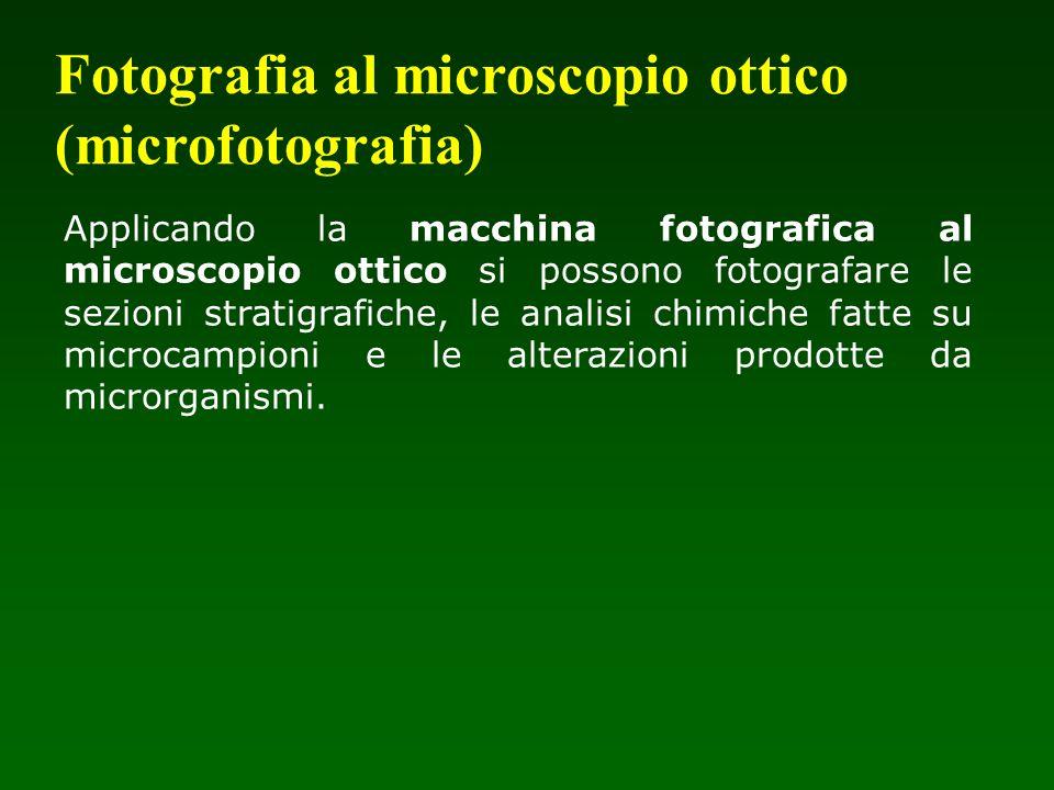 Fotografia al microscopio ottico (microfotografia)