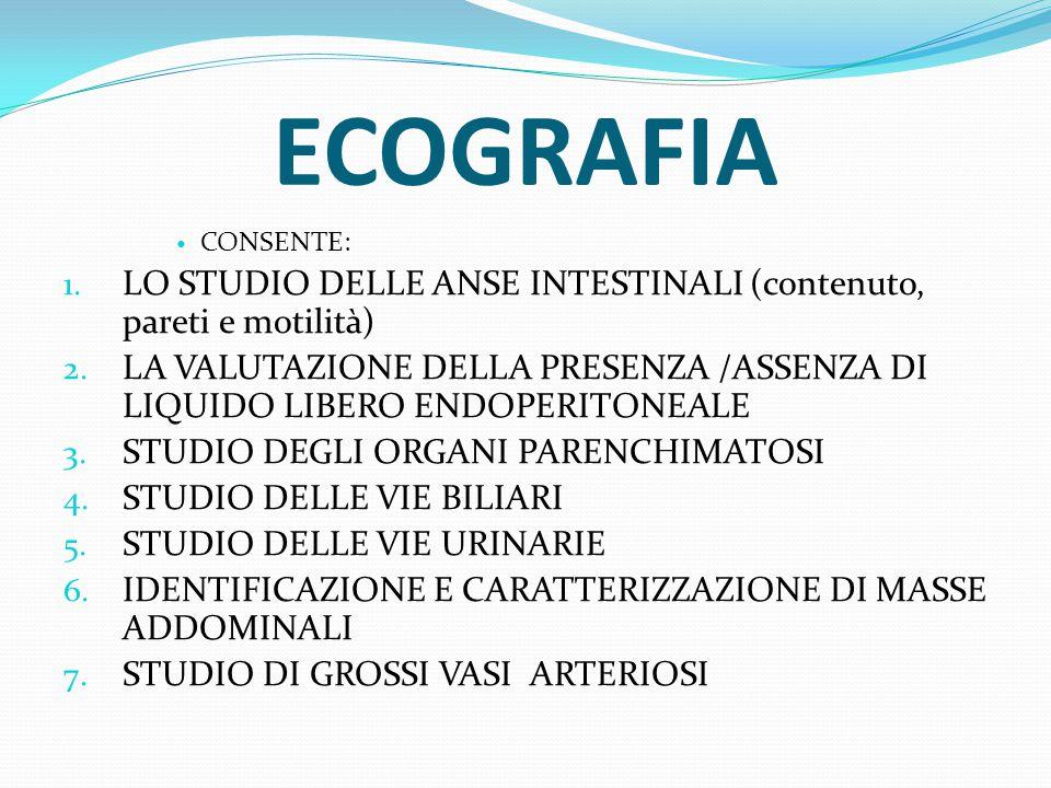 ECOGRAFIA CONSENTE: LO STUDIO DELLE ANSE INTESTINALI (contenuto, pareti e motilità)