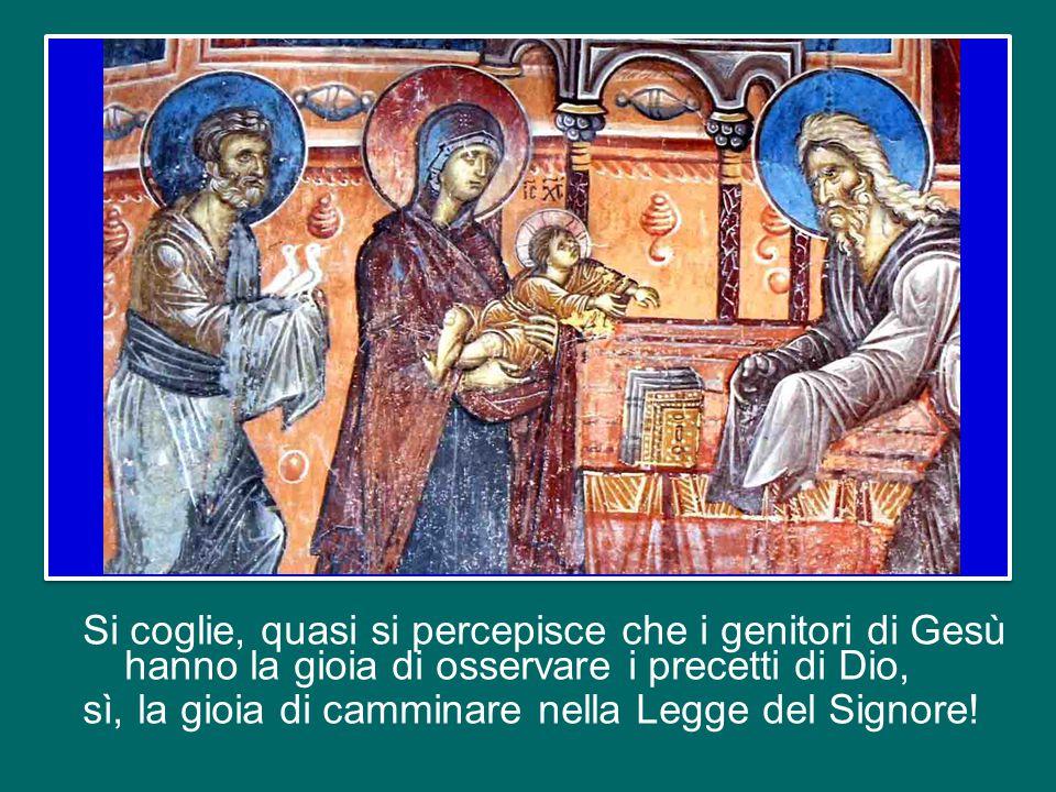 Si coglie, quasi si percepisce che i genitori di Gesù hanno la gioia di osservare i precetti di Dio, sì, la gioia di camminare nella Legge del Signore!