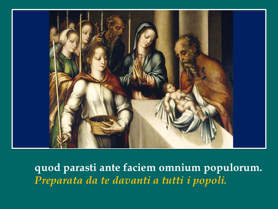 quod parasti ante faciem omnium populorum