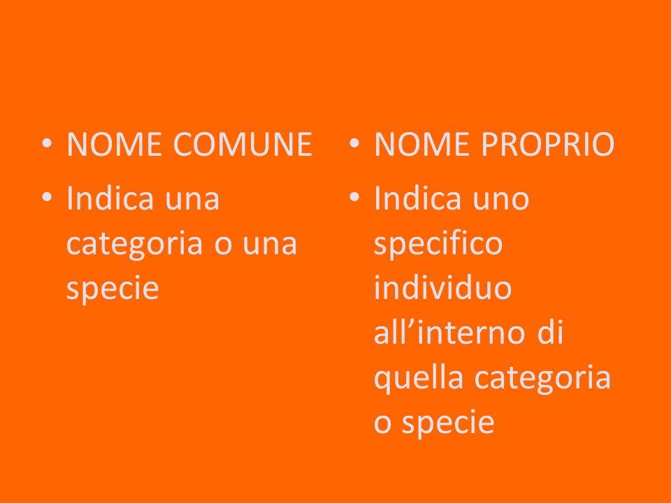 NOME COMUNE Indica una categoria o una specie. NOME PROPRIO.