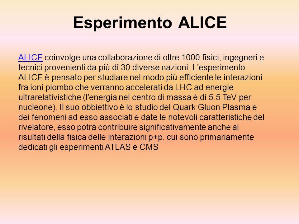 Esperimento ALICE