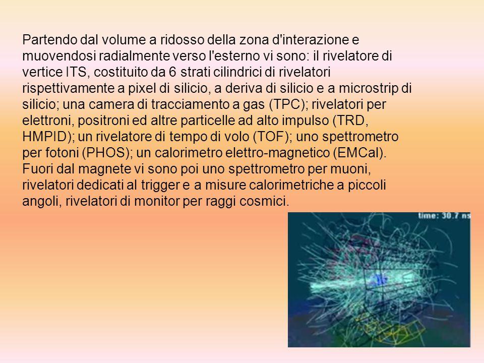 Partendo dal volume a ridosso della zona d interazione e muovendosi radialmente verso l esterno vi sono: il rivelatore di vertice ITS, costituito da 6 strati cilindrici di rivelatori rispettivamente a pixel di silicio, a deriva di silicio e a microstrip di silicio; una camera di tracciamento a gas (TPC); rivelatori per elettroni, positroni ed altre particelle ad alto impulso (TRD, HMPID); un rivelatore di tempo di volo (TOF); uno spettrometro per fotoni (PHOS); un calorimetro elettro-magnetico (EMCal).