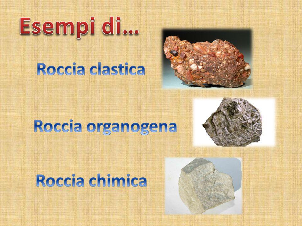 Esempi di… Roccia clastica Roccia organogena Roccia chimica