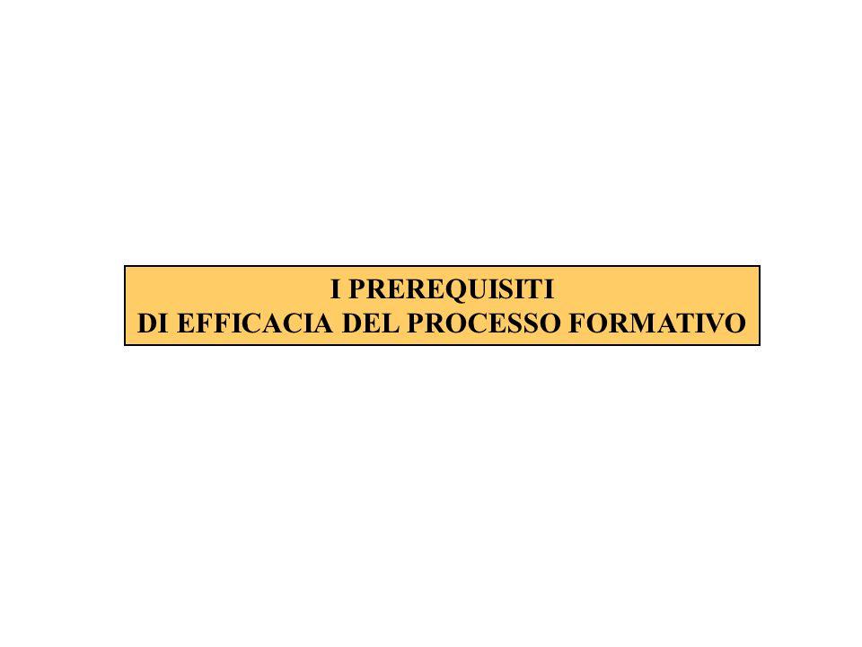 DI EFFICACIA DEL PROCESSO FORMATIVO