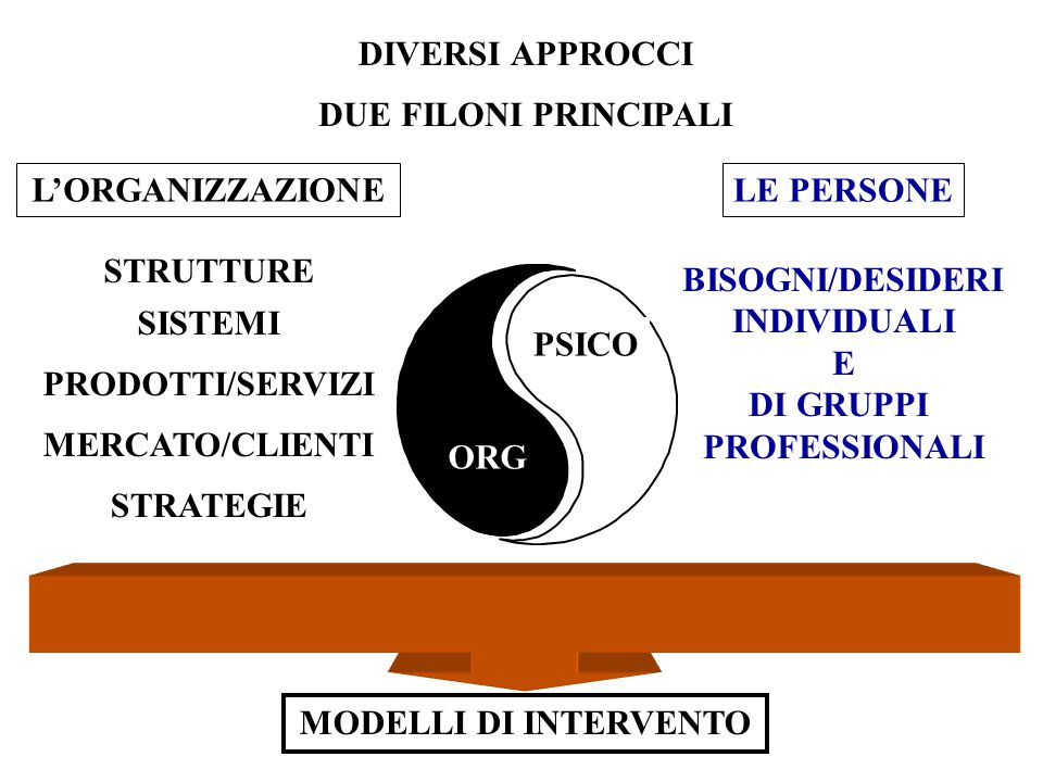 DIVERSI APPROCCI DUE FILONI PRINCIPALI. L'ORGANIZZAZIONE. LE PERSONE. STRUTTURE. BISOGNI/DESIDERI.