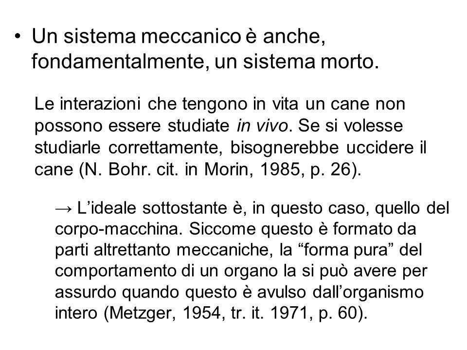Un sistema meccanico è anche, fondamentalmente, un sistema morto.