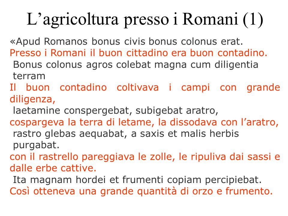 L'agricoltura presso i Romani (1)
