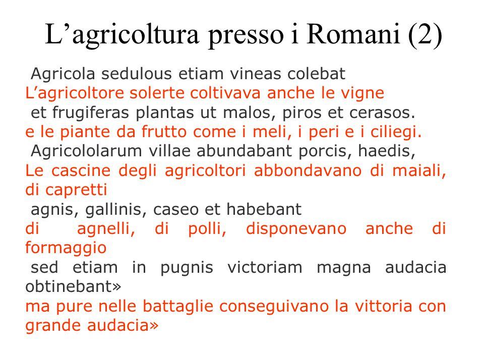 L'agricoltura presso i Romani (2)