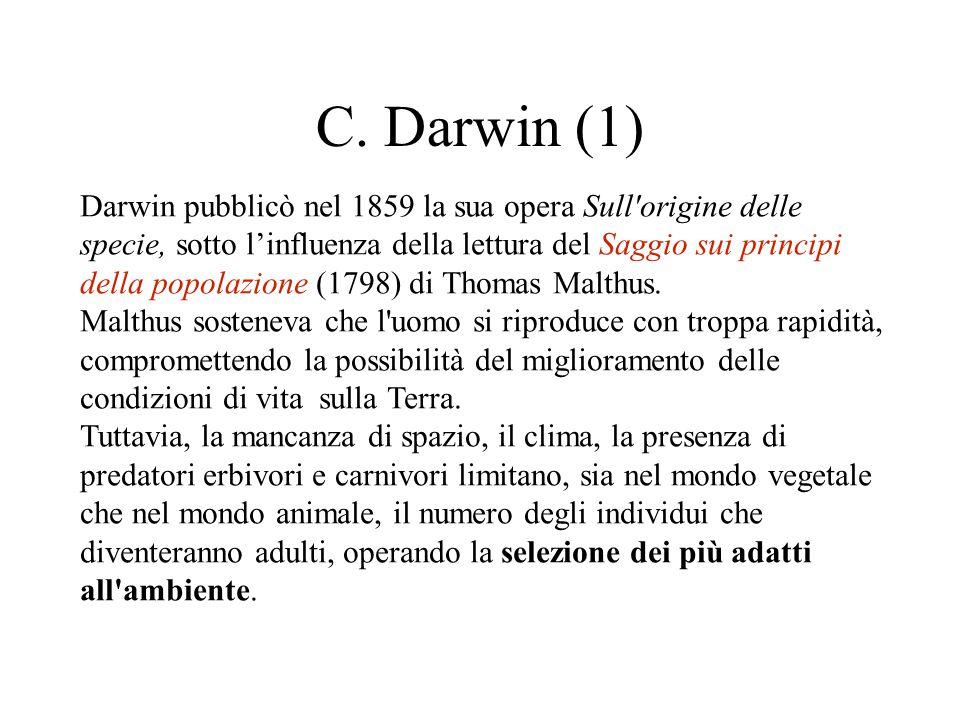 C. Darwin (1)
