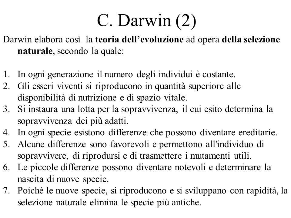 C. Darwin (2) Darwin elabora così la teoria dell'evoluzione ad opera della selezione naturale, secondo la quale: