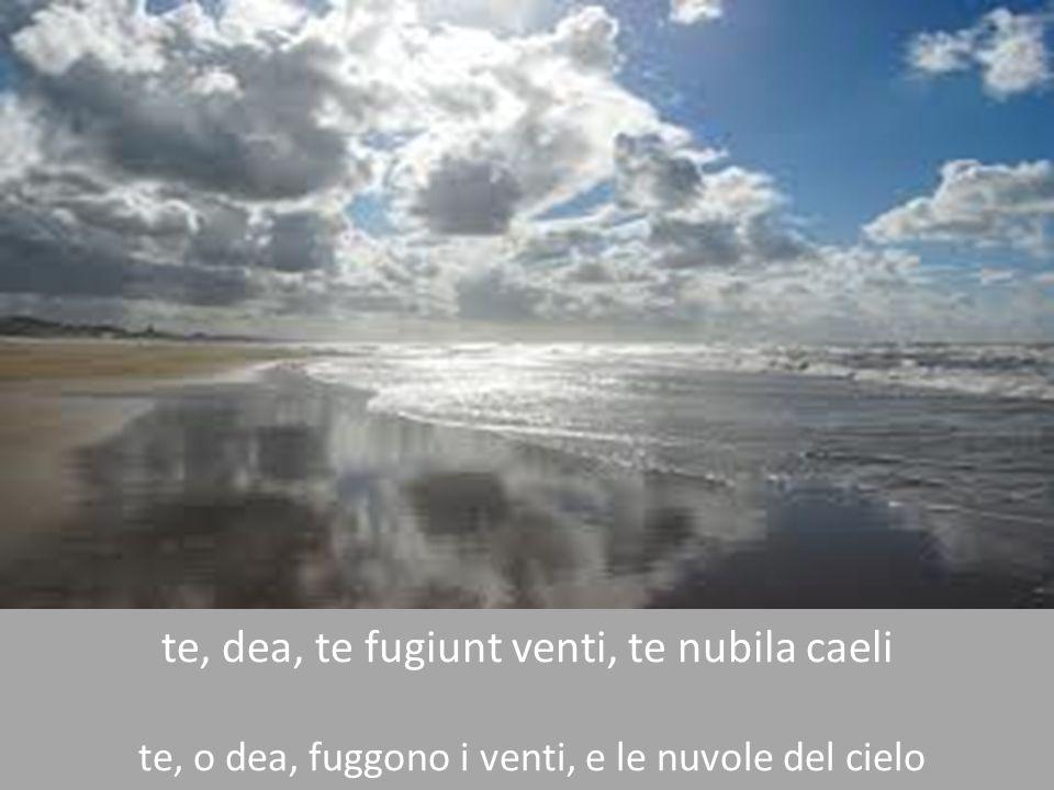 te, dea, te fugiunt venti, te nubila caeli te, o dea, fuggono i venti, e le nuvole del cielo