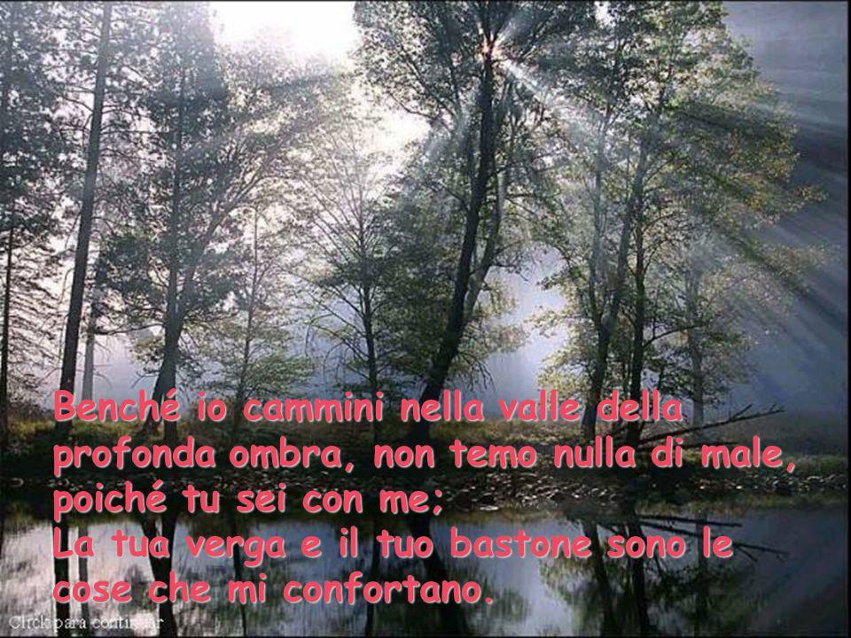 Benché io cammini nella valle della profonda ombra, non temo nulla di male, poiché tu sei con me;